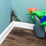 Le cause della muffa in casa
